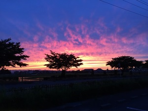 夕陽ー1.jpg